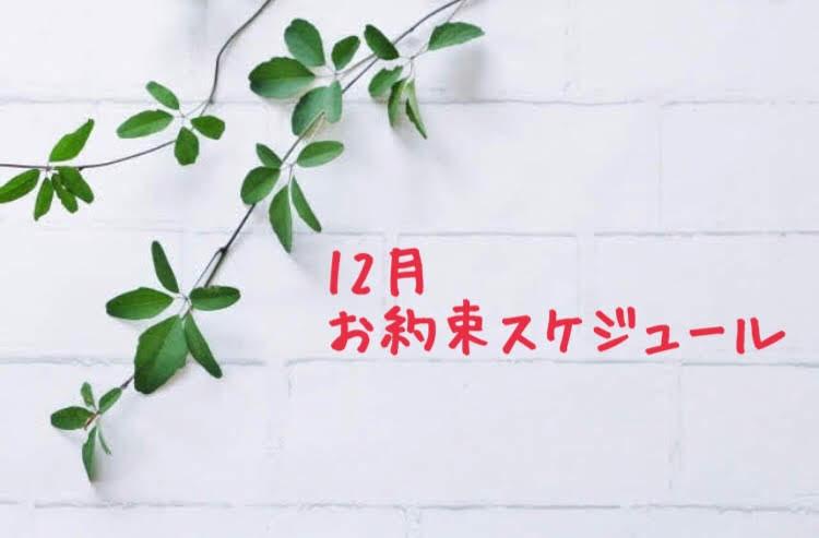 12月のお約束スケジュール