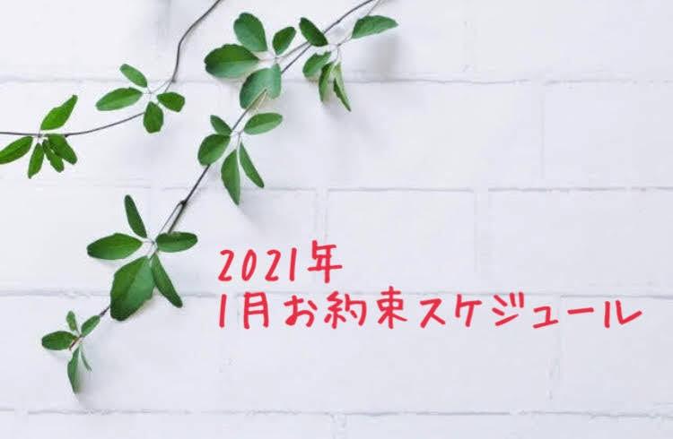 2021年1月のお約束スケジュール